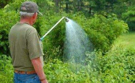 Правильный выбор поливочной системы для огорода – залог обильных урожаев