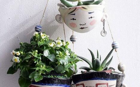Полезное украшение дачи и дома — кашпо для цветов
