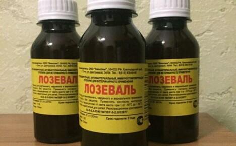 Применение препарата Лозеваль при лечении животных