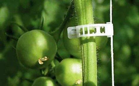 Клипсы для подвязывания растений, сделанные в Китае