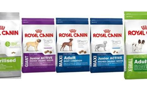 Линейка кормов Роял Канин для собак и как выбрать подходящий вариант