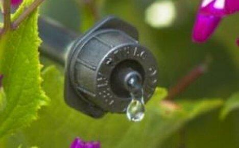 «Капельница» для огорода, или как лучше организовать полив садового участка