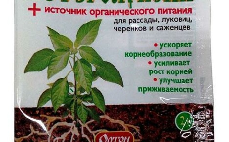 Гетероауксин: инструкция по применению препарата