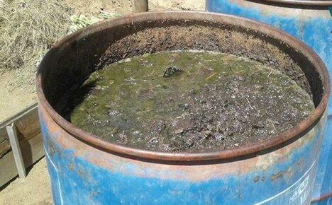 Навоз коровий – как применять для подкормок растений