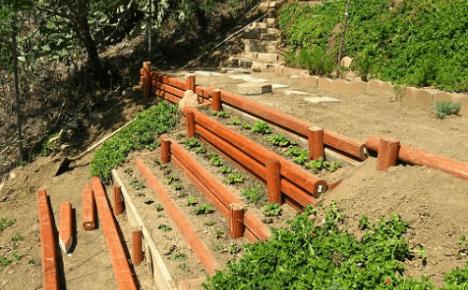 Как обустроить огород на склоне?