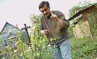 Как удобрить куст смородины, не повредив корни (видео)
