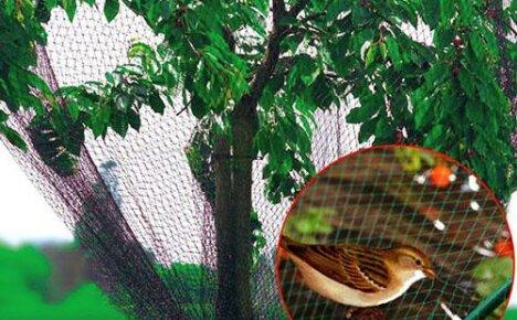 Сетка от птиц и насекомых, сделанная в Китае