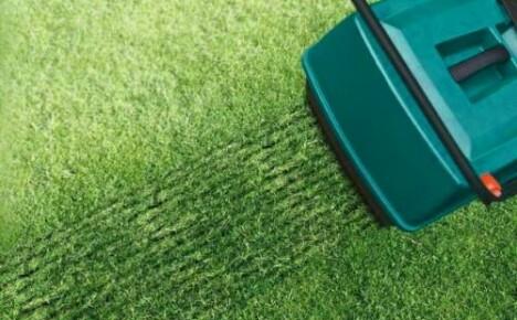 Какие нужны инструменты для газона?