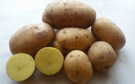 Отличный сорт для средней полосы России картофель Гала