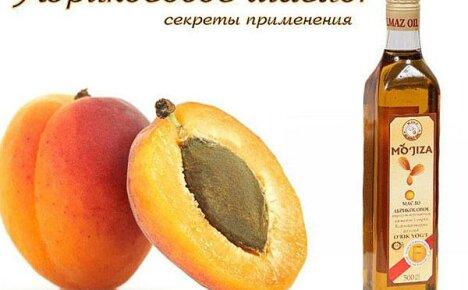 Откройте для себя целебное абрикосовое масло