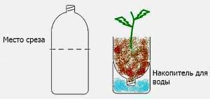 вертикальная клумба из пластиковых бутылок