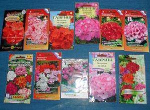пакеты с семенами пеларгонии