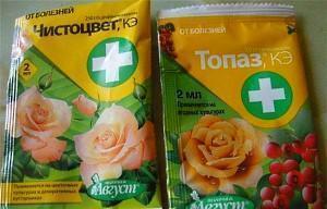 Препараты для лечения черной пятнистости на розах