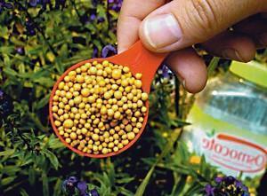 Сульфат калия удобрение применение для томатов