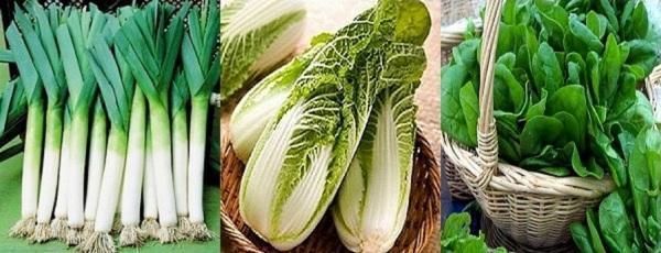 лук-порей, пекинская капуста, шпинат
