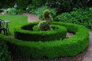 декорирования дворов