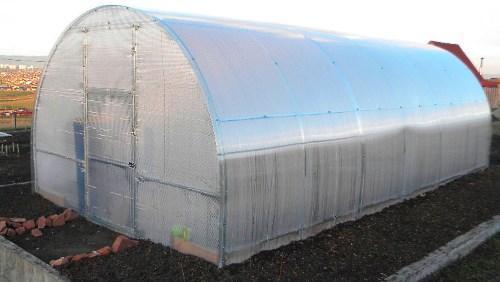 Оборудование теплицы для выращивания огурцов