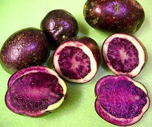 Оригинальй цвет клубней картофеля