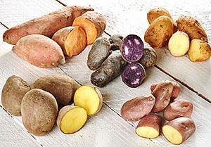 Разноцветный картофель