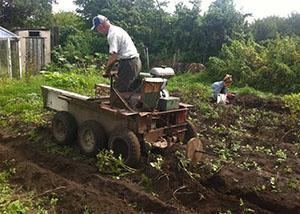 Уборка урожая механическим способом