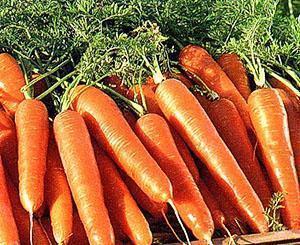 Хороший урожай витаминов