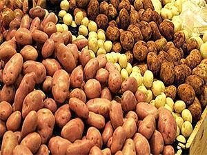 Картофель разных сортов