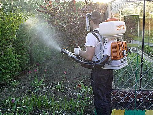 Борьба с болезнями растений и вредителями