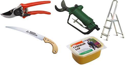 Набор инструментов по уходу за барбарисом
