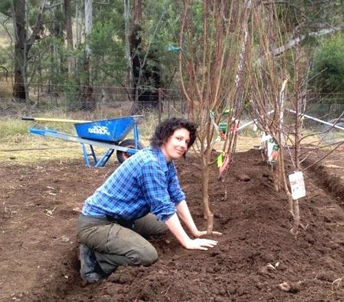 Работы в осеннем саду