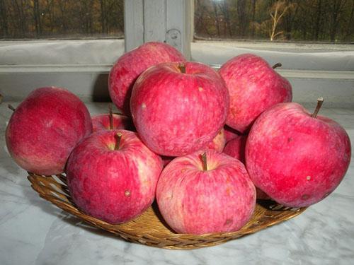 Яблоки сорта Мельба