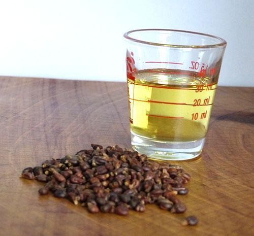Масло из виноградных косточек польза и применение