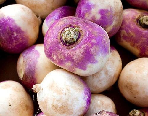 Сочный и вкусный корнеплод