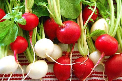 Витаминный корнеплод можно употреблять не всем