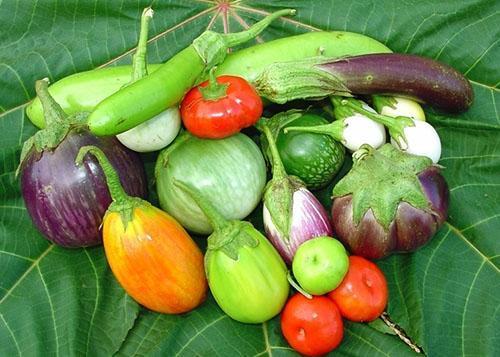 Длинные, круглые, овальные плоды