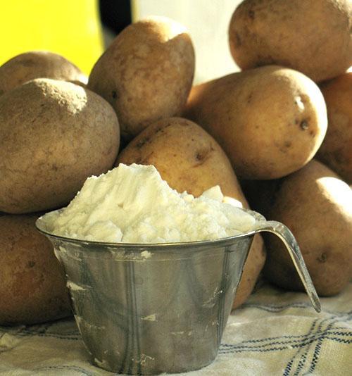 Картофель богат крахмалом