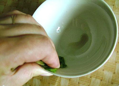 Отжатие сока из листа каланхоэ