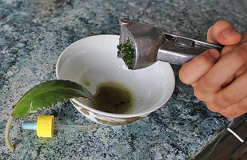 Приготовление лекарственного средства для желудка