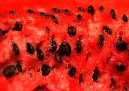 Семечки арбуза обладают целебными свойствами