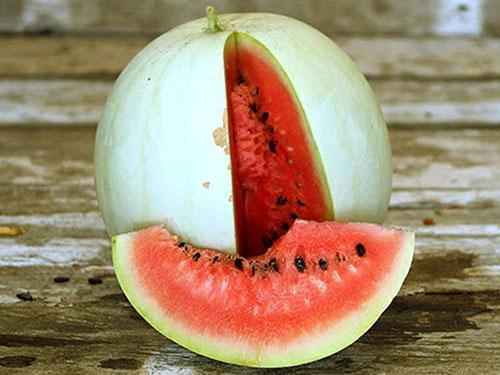 У белого арбуза мякоть красного или розового цвета