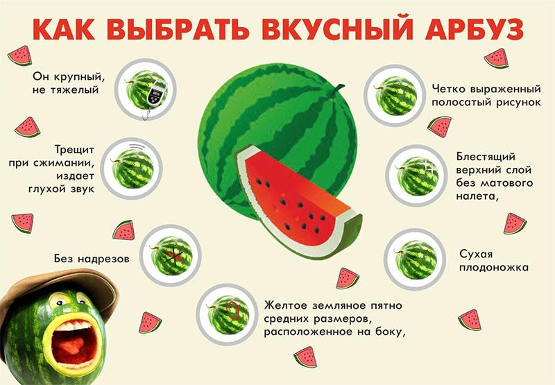 выбираем вкусный арбуз