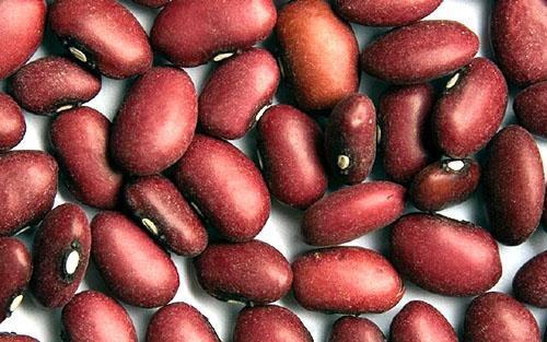 Плоды красной фасоли