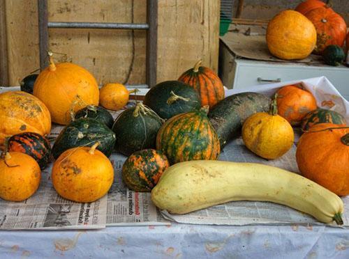 Плоды в хранилище регулярно проверяются