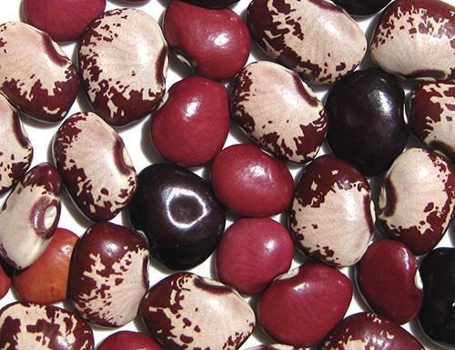 Плоские, широкие плоды лима