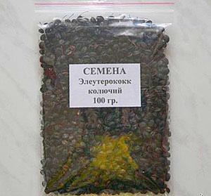 Семена элеутерококка