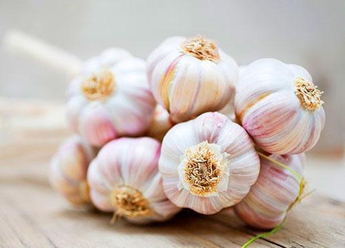 Сохранить фасоль неповрежденной поможет чеснок