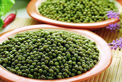 Зеленая фасоль сорта маш