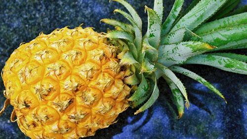 У спелого ананаса приятный ананас