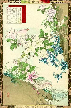 У японцев цветы азалии посвящены чувственной красоте женщин