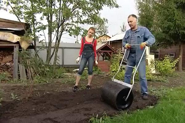 Уплотнение почвы катком для газона