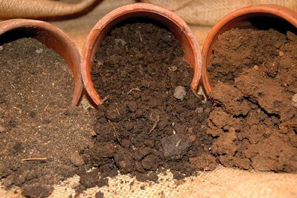 Подготовка посадочной смеси грунта